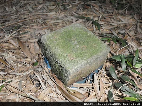 竹林中不明標石
