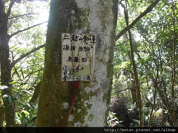 二龍山東北峰 352M