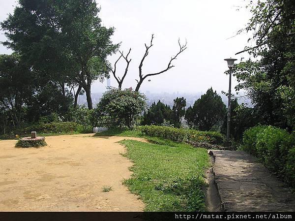 白鷺鷥山 142M
