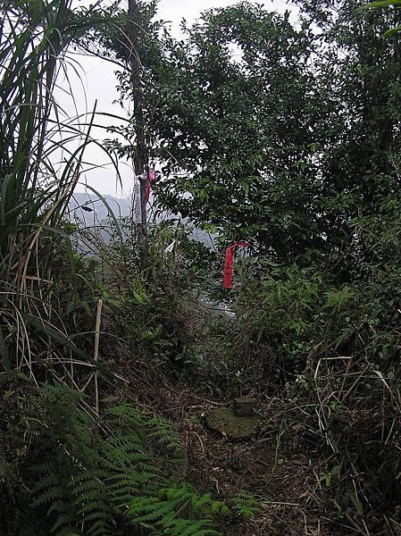 魚衡山南峰