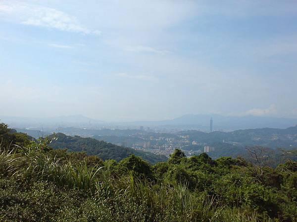 從漳湖步道看台北市區