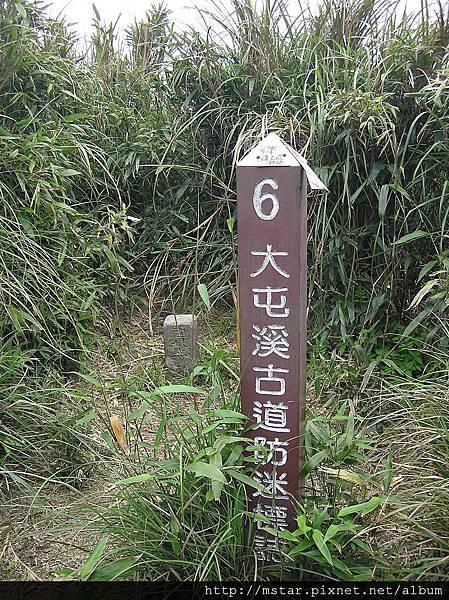 小觀音山西峰 1043M