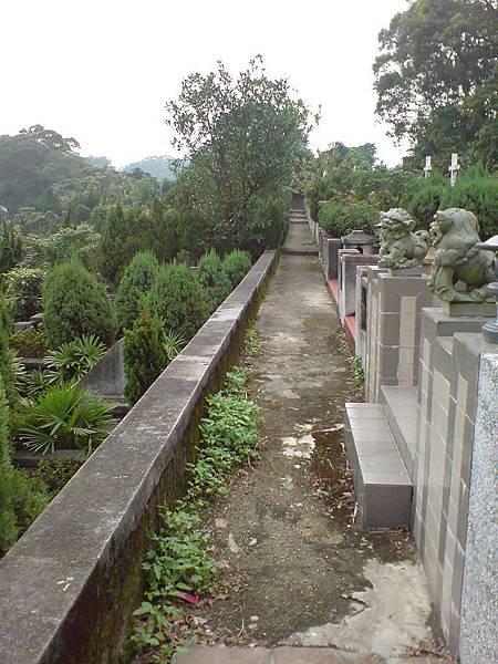 穿過整齊的公墓區