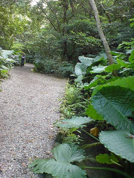 富陽生態公園