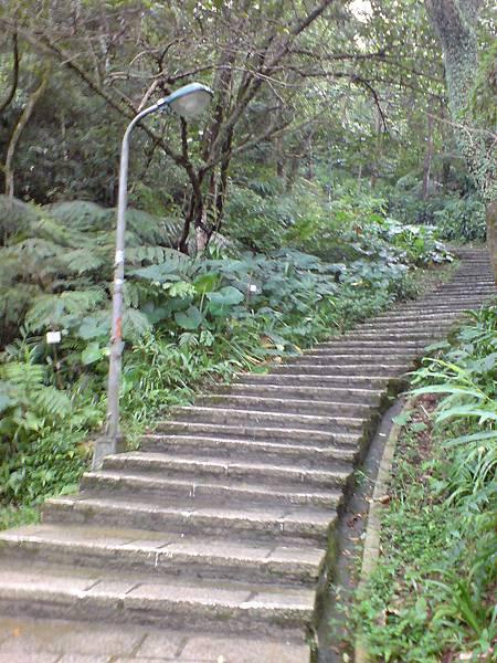 重頭戲:陡上石階