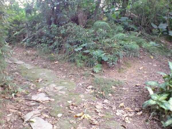 接上短短水泥路