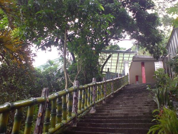 仙跡岩的廟