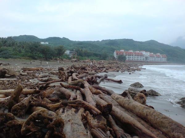 留下海灘前緣的大木頭來擋