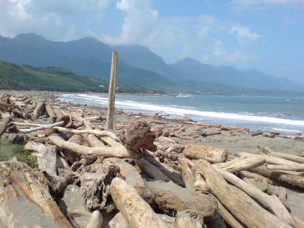 成堆的木頭