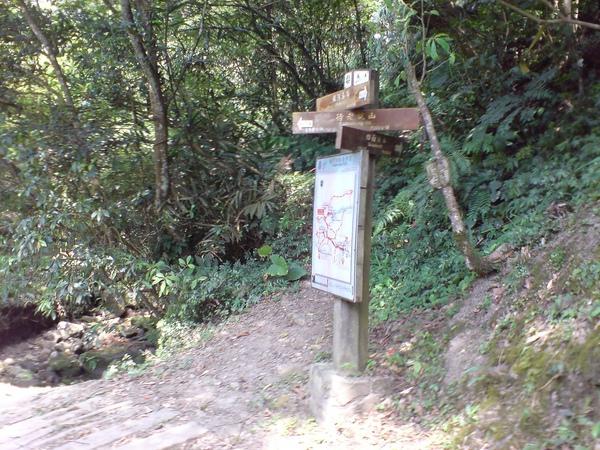 往四面頭山的岔路