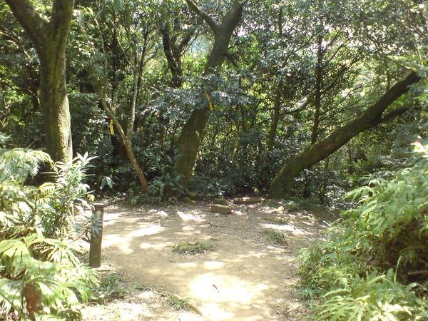 往筆架山的岔路