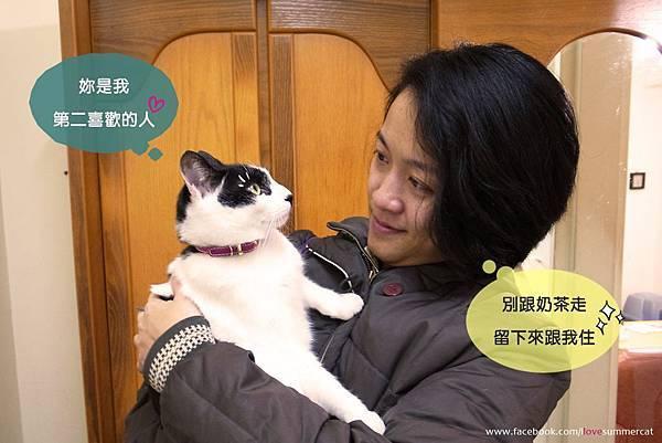 夏貓生日禮物_14