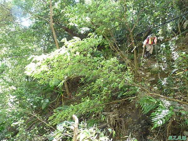 鳥嘴山西南峰20130919 (21)