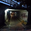 鐵馬行20130929  (43)