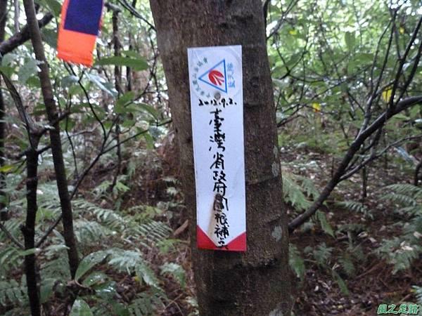 後洲子山20130707 (14)