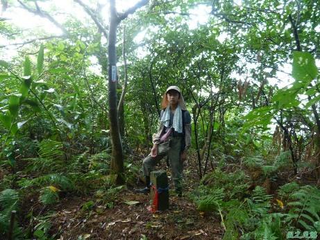 後洲子山20130707 (33)