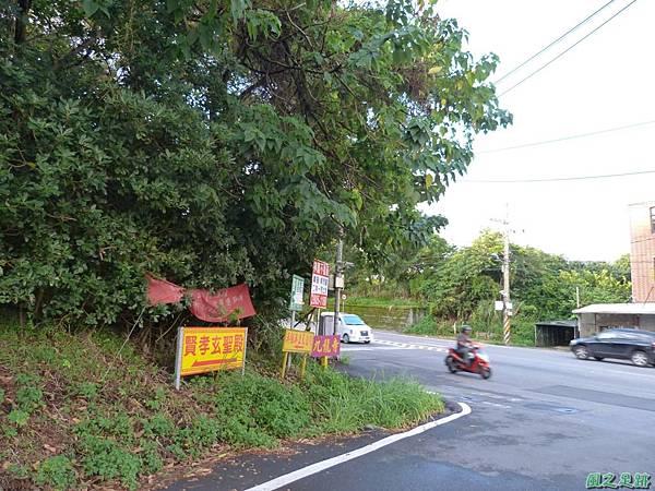 後洲子山20130707 (100)