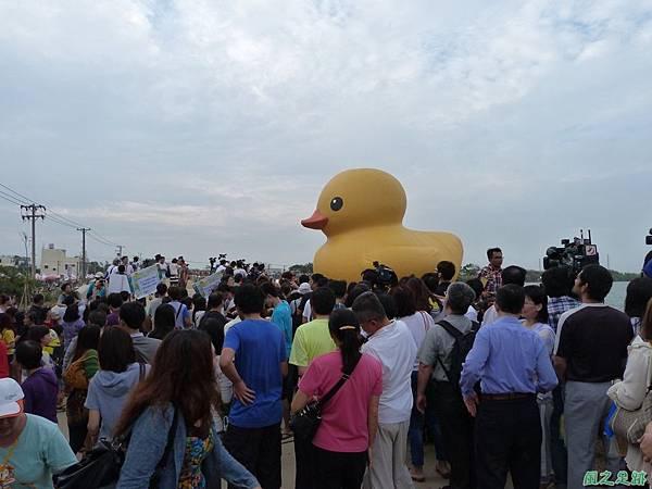 黃色小鴨20131110_5.JPG