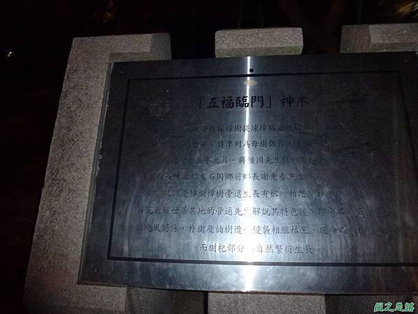 石岡五福臨門神木20131116 (29).JPG
