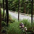 翠峰湖山行20070707(2).jpg