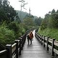 翠峰湖山行20070707(47).jpg