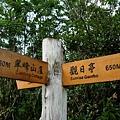 翠峰湖山行20070707(60).jpg