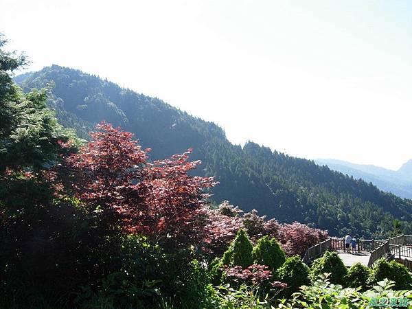 多門山20070707(20)