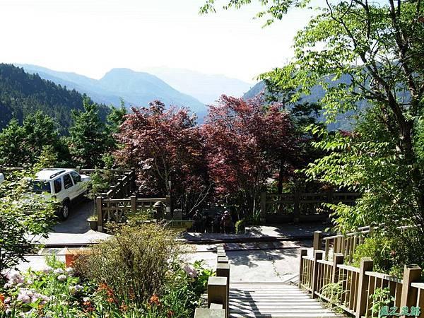 多門山20070707(31)