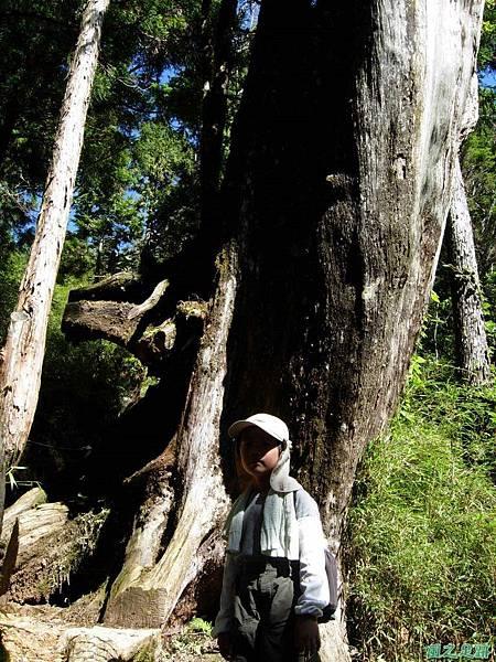 多門山20070707(39)