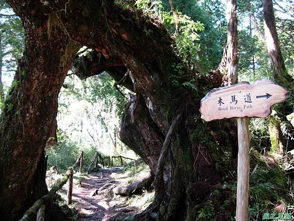多門山20070707(40)