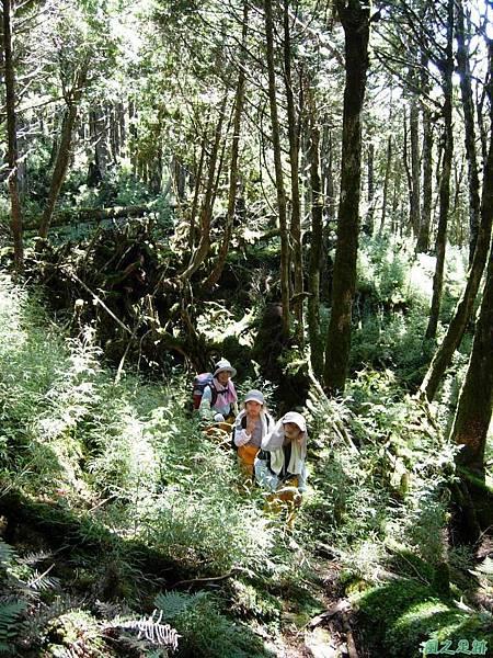 多門山20070707(60)