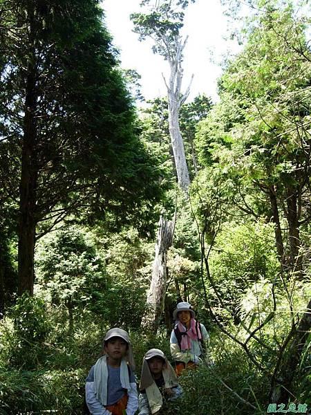 多門山20070707(63)