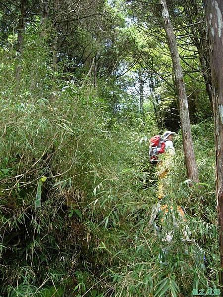 多門山20070707(67)
