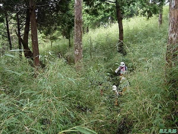 多門山20070707(85)