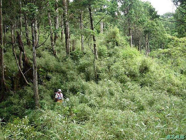 多門山20070707(94)