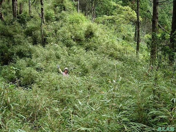 多門山20070707(96)
