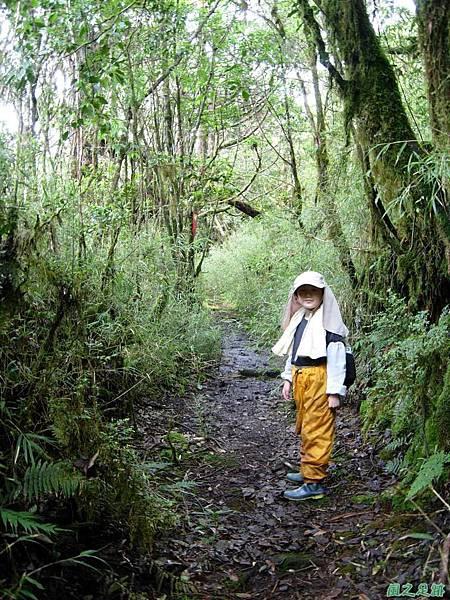 多門山20070707(98)