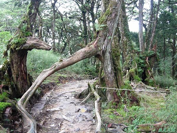 多門山20070707(103)