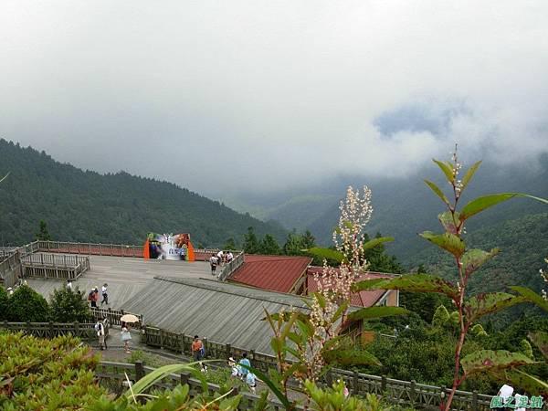多門山20070707(110)