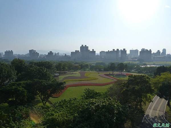 北市河濱花海地景20131202(5)