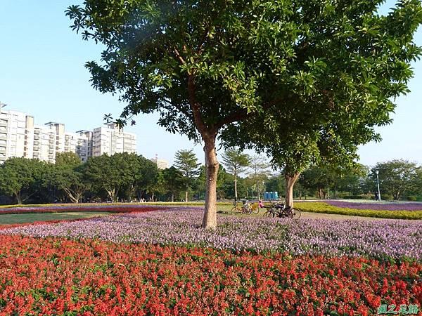 北市河濱花海地景20131202(9)