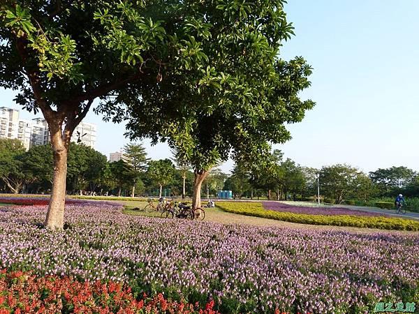 北市河濱花海地景20131202(11)