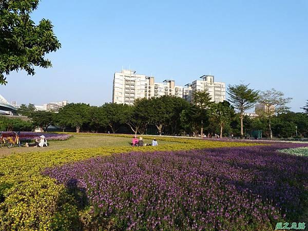 北市河濱花海地景20131202(12)