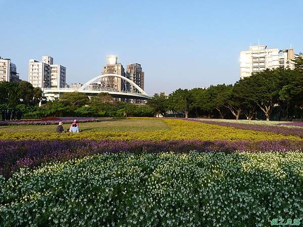 北市河濱花海地景20131202(14)