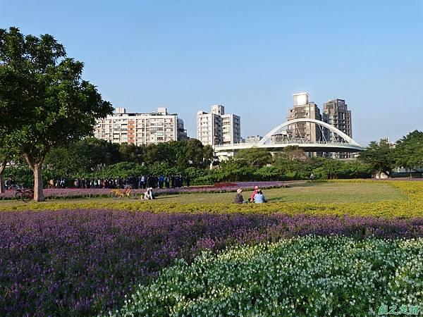 北市河濱花海地景20131202(15)