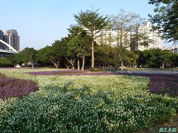 北市河濱花海地景20131202(20)