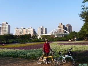 北市河濱花海地景20131202(23)