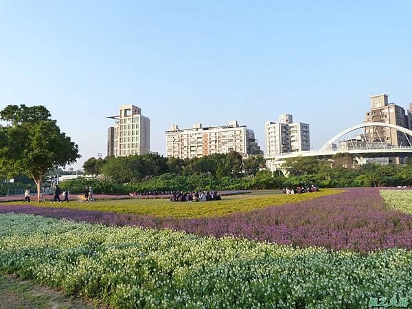 北市河濱花海地景20131202(26)