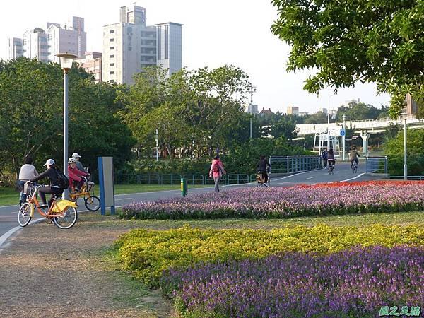 北市河濱花海地景20131202(28)