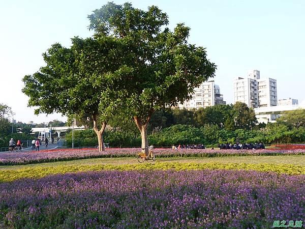 北市河濱花海地景20131202(29)